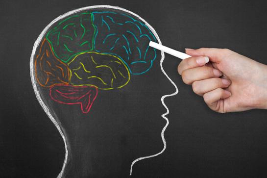 Estudo aponta que excesso de peso pode afetar a memória